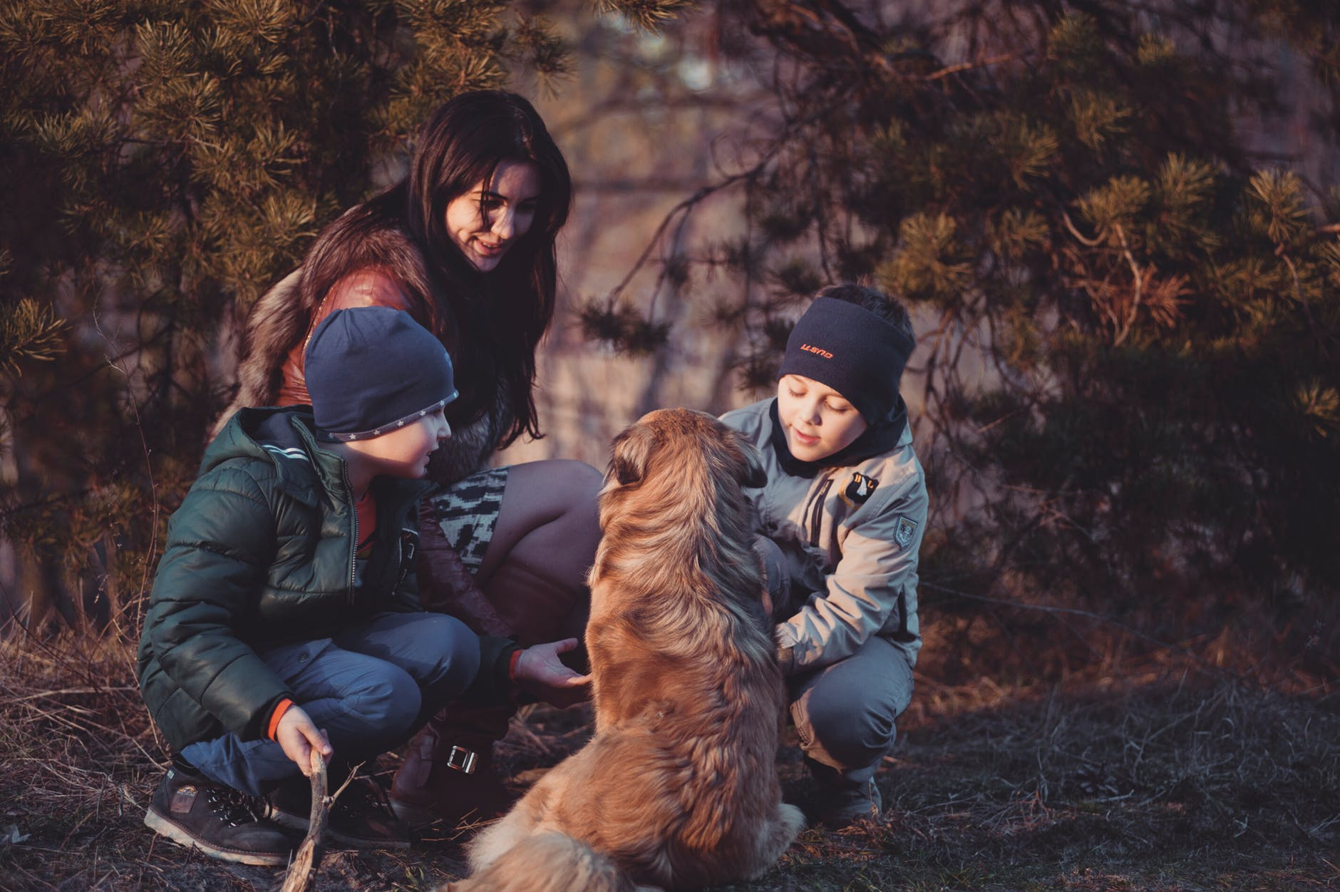 How a Pet Can Bring Your Family Closer